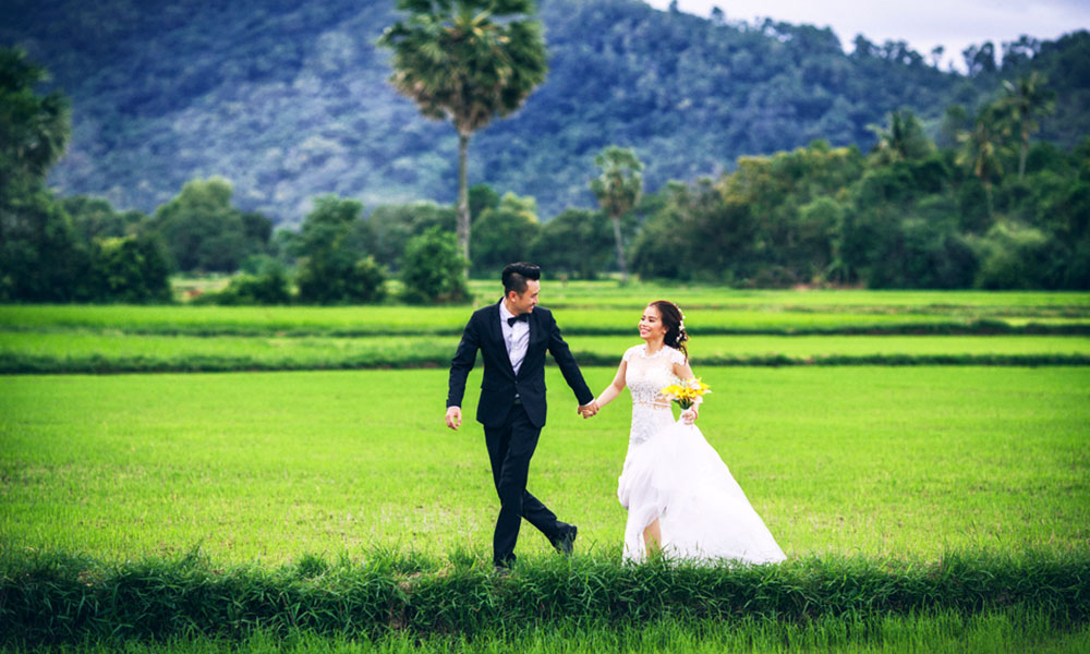 Địa điểm chụp ảnh cưới đẹp ở Miền Tây - Cánh đồng lúa Miền Tây