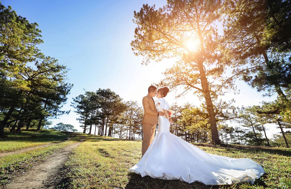 Địa điểm chụp ảnh cưới đẹp ở Đà Lạt - Đồi thông