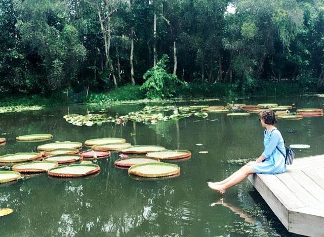 Địa điểm chụp ảnh cưới đẹp ở Đồng Tháp - KDL sinh thái Xẻo Quýt