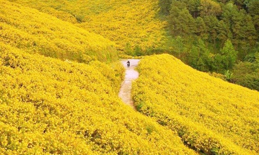 Tuần trăng mật  Nên đi du lịch ở đâu - Đà Lạt (Lâm Đồng)